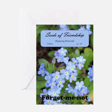 forget me not seed packets forget me not stationery cards invitations greeting cards more