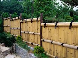 Privacy Fence Ideas For Backyard Bamboo Backyard Privacy Fence Design Idea And Decorations