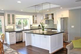 kitchen ceiling ideas drop ceiling ideas kitchen transitional with black 8 black kitchen