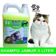 Sho Kucing Anti Jamur referensi harga sho kucing untuk kutu dan jamur april 2018 hemat