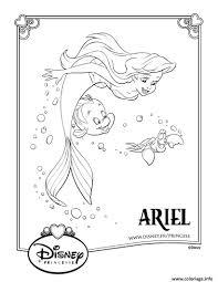 Coloriage La Petite Sirene Disney Princesse dessin