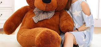 s day teddy bears valentines day teddy bears walgreens enam