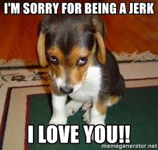 Memes About Being Sorry - i m sorry for being a jerk i love you sad puppy meme generator