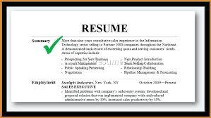 summary for resume exles summary for resume awesome sle professional summary resume