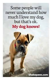 boxer dog grooming dog quote pet grooming pinterest dog