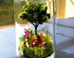 terrarium jar etsy studio