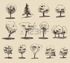 trees sketch set vintage vector illustration engraved style