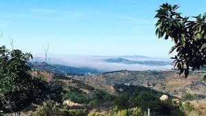 dense fog delays travelers returning from thanksgiving nbc 7 san