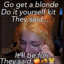 Cosmetology Memes - 17 foolproof ways to piss off your hairstylist blond hairstylists