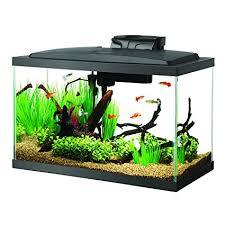 10 gallon planted tank led lighting amazon com aqueon fish aquarium starter kit led 10 gallon pet