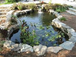 58 best water gardens images on pinterest water garden garden