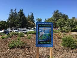 native plant nursery santa cruz certified landscape gallery monterey bay friendly landscaping