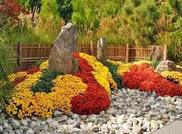 Picture Of Mums The Flowers - 22 floral installations and landscaping ideas with mums