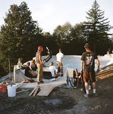 Treehouse Fostering Agency - the cinder cone skate treehouse