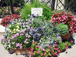 Container Flower Gardening Ideas Container Garden Ideas Inspired Epcot Center Dma Homes 55511
