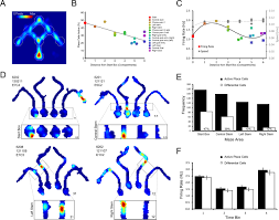 place cells on a maze encode routes rather than destinations elife