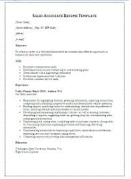 resume format sles sales resume templates resume template word sales sales manager