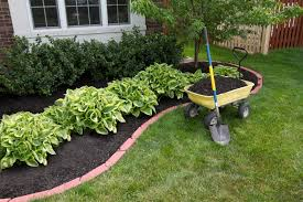Bushes For Landscaping Mulching Around The Bushes Landscaping Virginia