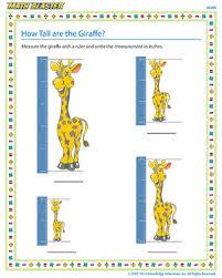 how tall are the giraffe kindergarten measurement worksheets