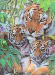 t 3 tigers tiger with cubs 3d picture 3dddpictures com