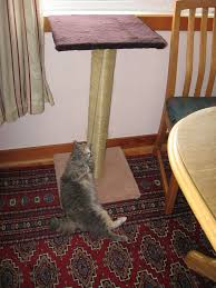 make a cat scratching post with pictures