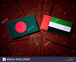Bangladesi Flag Bangladesh Flag With United Arab Emirates Flag On A Tree Stump