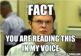 Fact Meme - the best of the schrute facts meme dunder mifflin tvs and humor