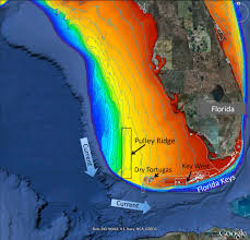 Map Florida Keys by Scientists Explore Remote Healthy Reef In Gulf Similar To Florida