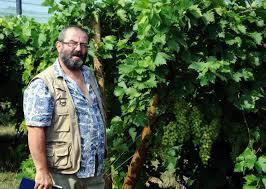 chambre d agriculture carcassonne chambre d agriculture tarn et garonne 8 carcassonne le raisin de