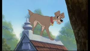 tramp alike u0027pound puppies u0027 episode lady u0026 tramp