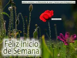 imagenes de feliz inicio de semana con rosas feliz lunes de bendicion que la paz del sen or sea contigo en este