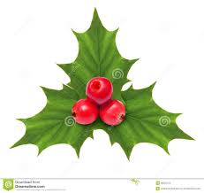 christmas decoration holly berry christmas decoration isolated stock image image of