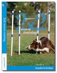 susan garrett dvd 2x2 weave 12 poles in 12 days