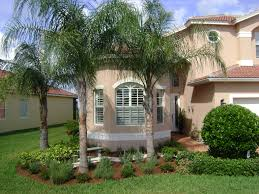 Free Backyard Landscaping Ideas by Landscaping Ideas Florida Best Artificial Turf Cost Citrus Park