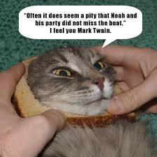 Cat In Bread Meme - bread n bitter