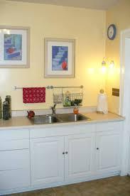 Modular Kitchen Design Ideas Aknsa Com Small L Shaped Kitchen Cabinet Ideas 201