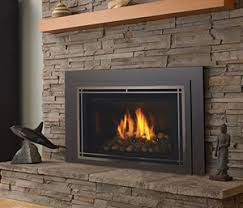 High Efficiency Fireplaces by The Fireplace Place Fireplaces Stoves Grills And Inserts