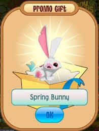 animaljam gift card animal jam flash a look at bunnies