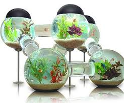 Aquarium Bed Set Aquarium Bed