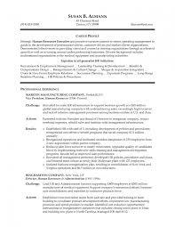 It Manager Sample Resume Best Hr Director Job Description Contemporary Sample Resumes
