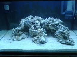 Live Rock Aquascaping S C A R L E T Reef Day 11 9 6 2011 New Aquascape