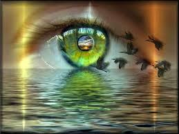 imagenes de ojos con frases bonitas pluma incipiente me desnudo ante tus ojos