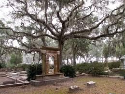 Savannah Georgia Forrest Gump Bench The Best Things To Do In Savannah Ga