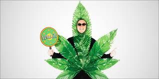 Weed Halloween Costume Collection Marijuana Halloween Costumes Pictures 7 Stoner
