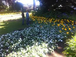 San Francisco Flower Garden by My California U201cnourishing Our Families U201d Talk U0026 Book Tour U2013 Mecca
