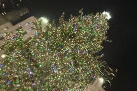 light up your day at a metro detroit tree lighting ceremony