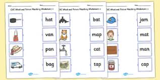 language sight words and vocab primary resources page 4