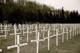 the field of crosses calgary alberta just a smidgen