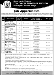 assistant zoologist job in zoological survey of pakistan islamabad