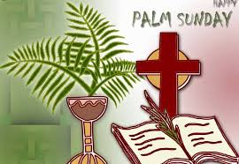palm for palm sunday 20 happy palm sunday wish pictures